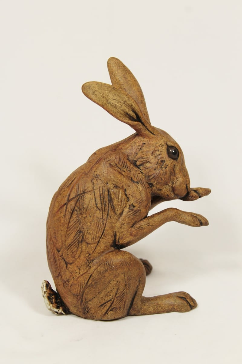 hare washing medium
