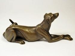Lurcher dog lying