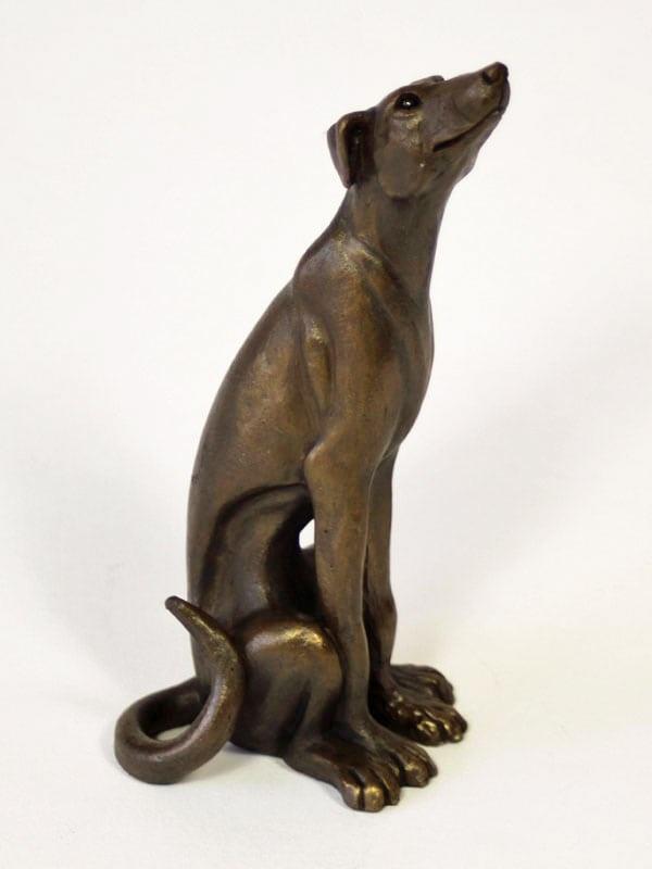 Lurcher dog sitting