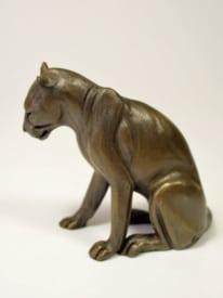 Panther sitting