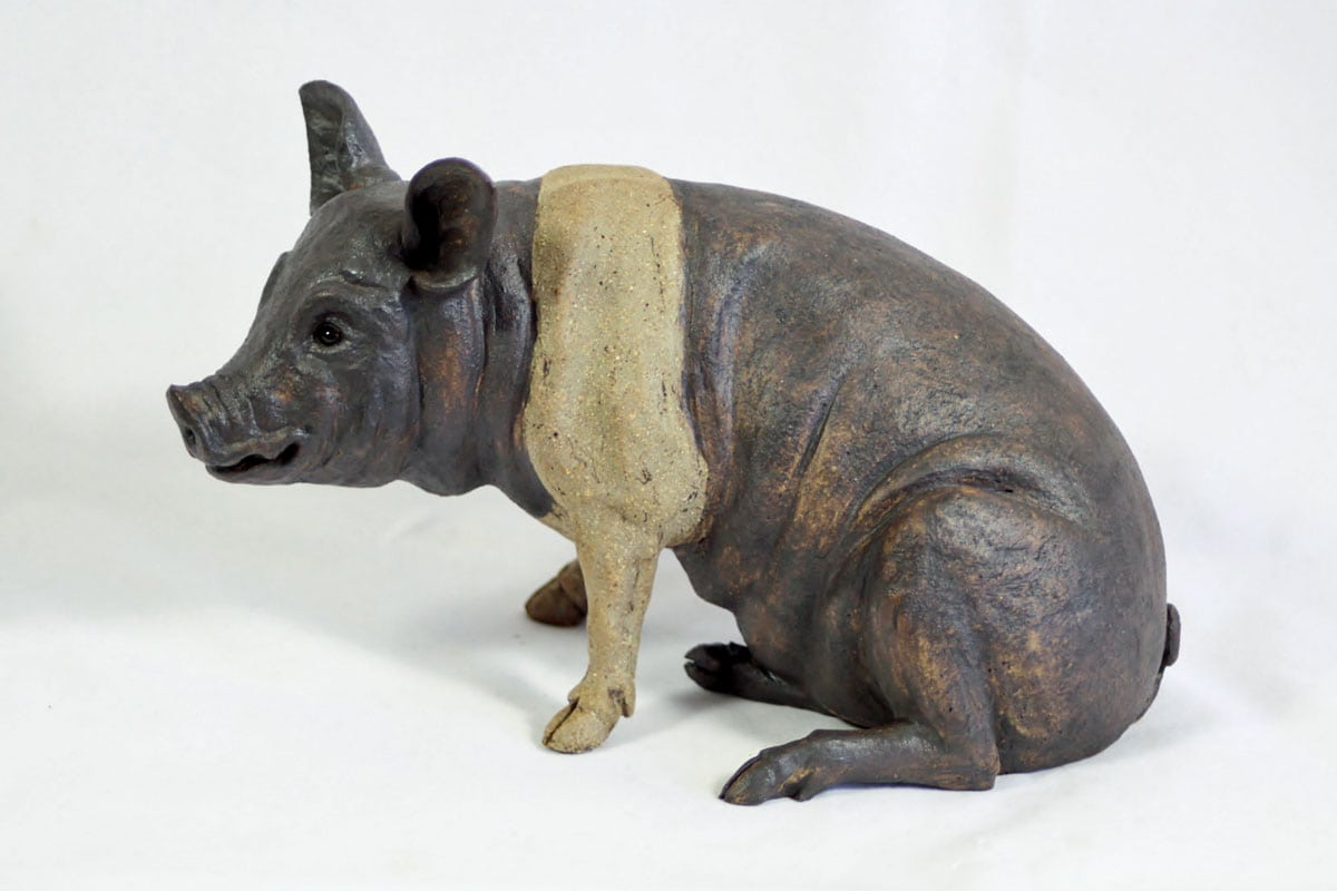 A Saddleback Pig - ceramic clay sculpture